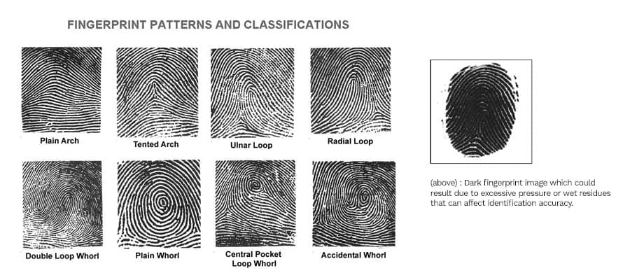 Comparing Fingerprint and Facial Recognition Technologies for Employees Tracking 2